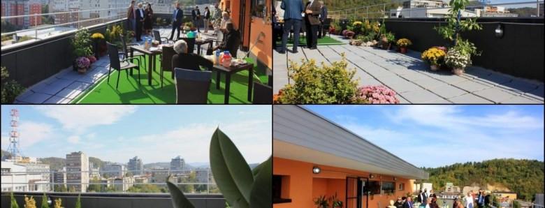 Prva zelena bašta na krovu zgrade u Tuzli: Stanari dobili poseban ugođaj